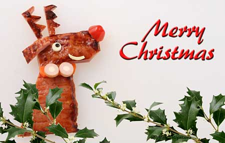 Merry Christmas - トナカイのクリスマスカード