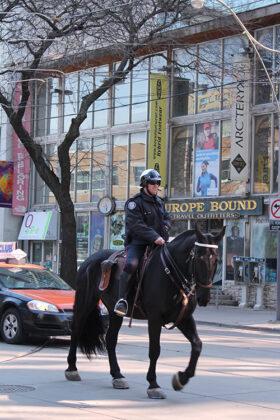 馬でパトロールするおまわりさん@トロント